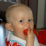 Tilde äter jordgubbar
